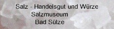 Hinweis-Link zu den Websites des Salzmuseum in Bad Sülze